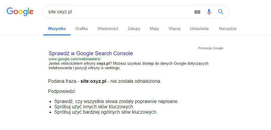 dlaczego mój blog nie wyświetla się w Google?